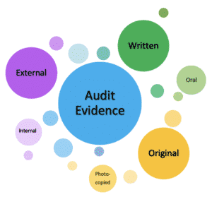 What is the meaning of the term Audit Evidence?