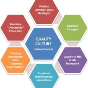 What are the core values and beliefs of a quality culture?