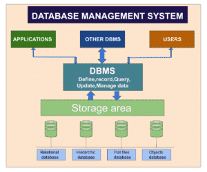 What are the database management system (DBMS) and its advantages?